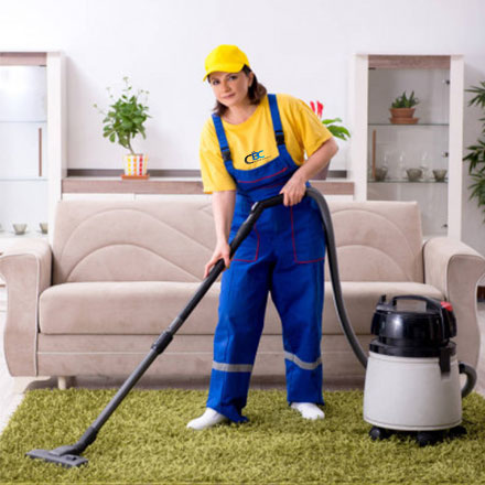 professional carpet cleaner in gold coast